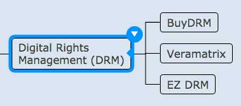 Figure 12. Digital rights management vendors.