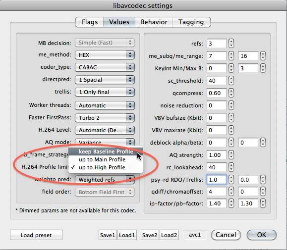 Figure 8. Customizing H.264 encoding settings.